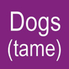 DOGS (Tame)
