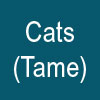 CATS (Tame)