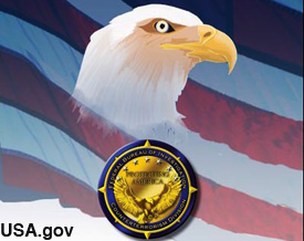 Eagle design used by the FBI